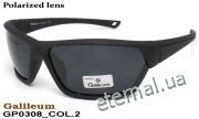 Galileum polarized очки GP0308 COL.2