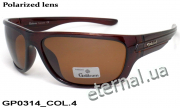 Galileum polarized очки GP0314 COL.4