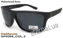 Galileum polarized очки GP0309 COL.2